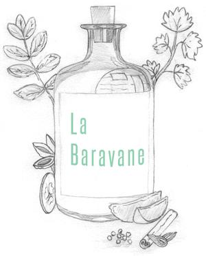 Logo Baravane gin